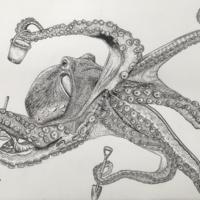 Octopus at Play