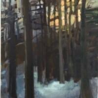 Sunrise through the winter trees